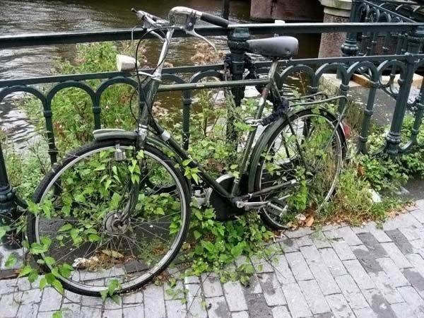 Name:  strangebicycleparking08vk9.jpg Views: 147 Size:  104.6 KB
