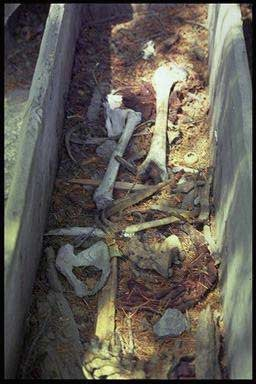 Name:  pic_chitral-kalash-graves01.jpg Views: 2494 Size:  20.3 KB