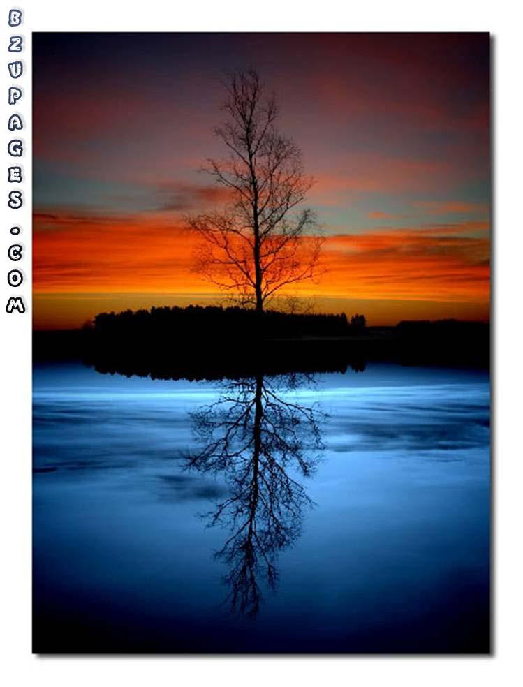 Name:  Reflection [Beautiful] (3).jpg Views: 736 Size:  73.0 KB
