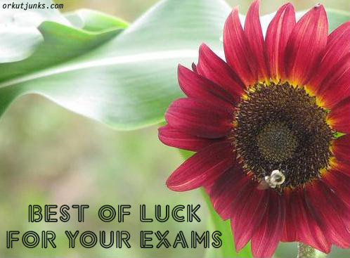Name:  exams11.jpg Views: 1410 Size:  66.2 KB