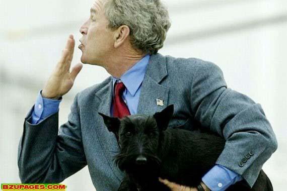 Name:  Bright moments of George W. Bush (9).jpg Views: 294 Size:  45.2 KB