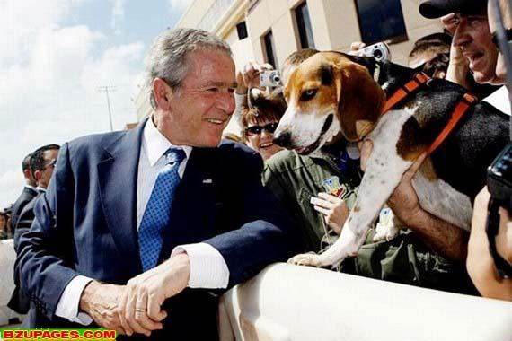 Name:  Bright moments of George W. Bush (24).jpg Views: 272 Size:  59.5 KB
