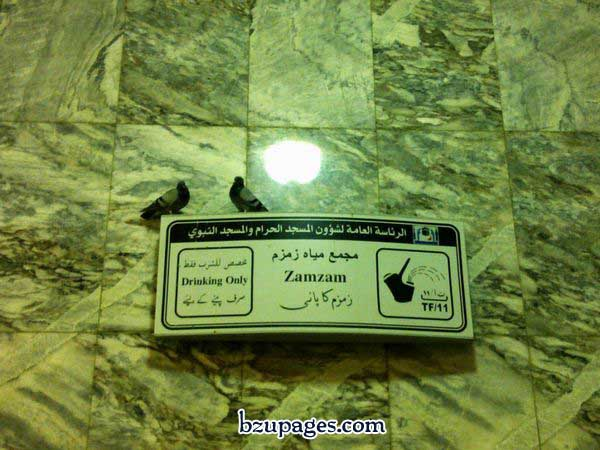 Name:  Hajj Latest Pictures 2010 November (38).jpg Views: 969 Size:  67.5 KB