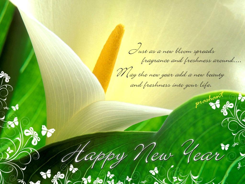 Happy New Year 2011; bye bye 2010-newyear.jpg