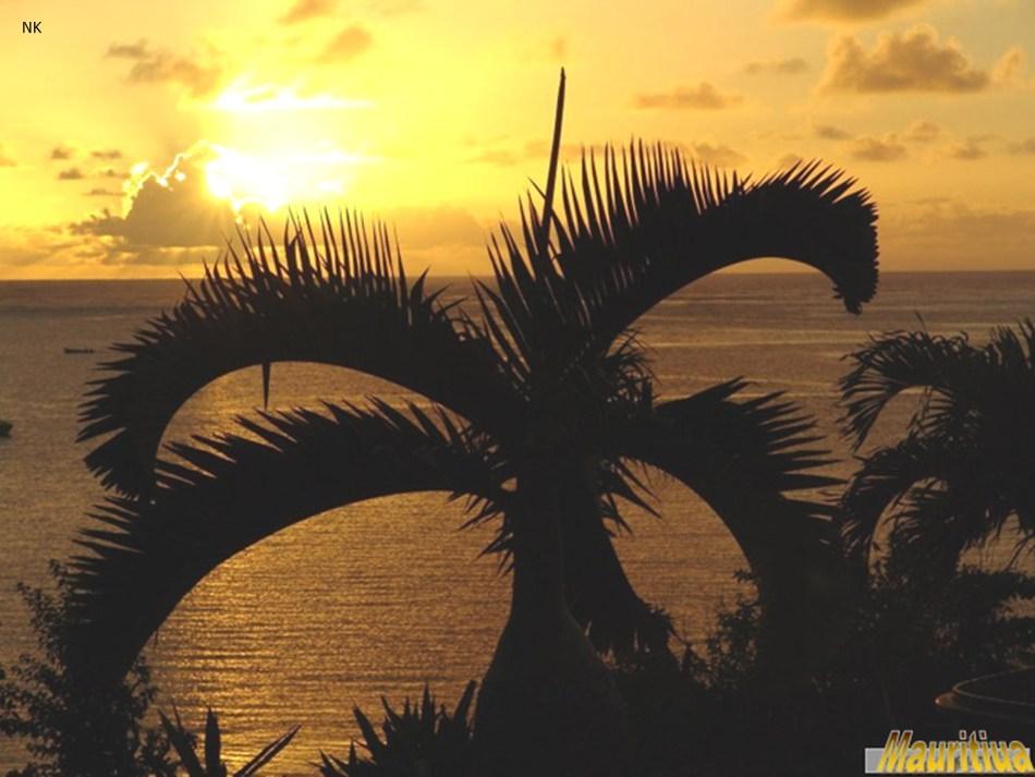 Beatiful Mauritius-slide9.jpg