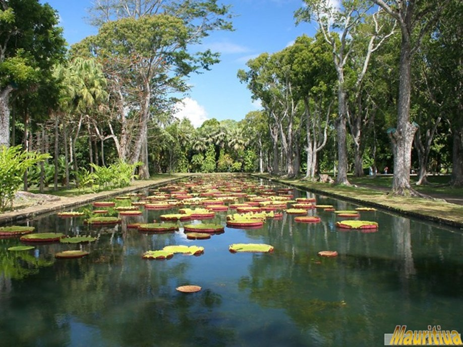 Beatiful Mauritius-slide19.jpg