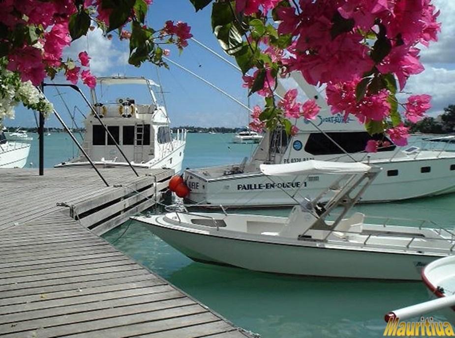 Beatiful Mauritius-slide30.jpg