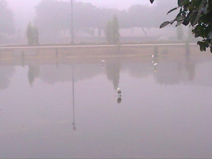 Name:  Fog in BZU (across central library)2.jpg Views: 311 Size:  28.1 KB