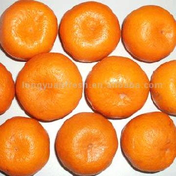 Name:  Flutar Maltay orange.jpg Views: 4350 Size:  24.9 KB