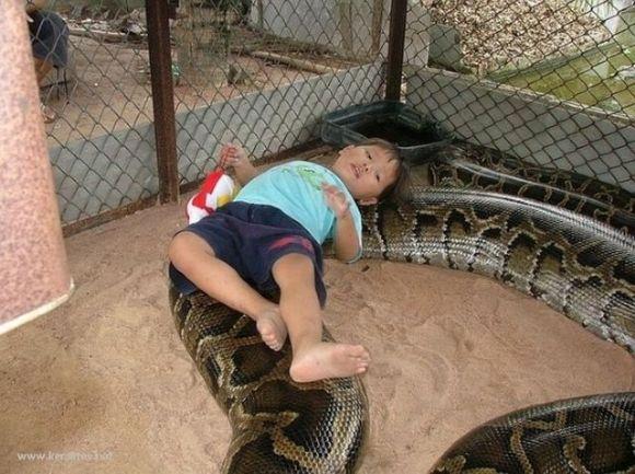 Name:  parenting-fails03.jpg Views: 1634 Size:  60.5 KB
