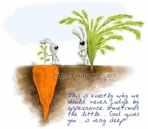 Name:  Carrot rabbit.jpg Views: 4869 Size:  44.7 KB
