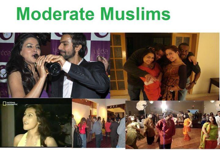 Name:  I Am A Moderate Muslim.jpg Views: 2245 Size:  65.0 KB