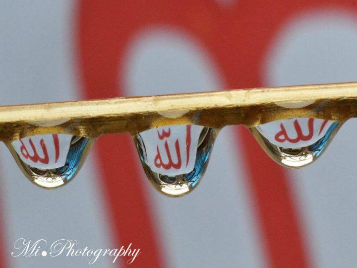 Name:  Subhan ALLAH.jpg Views: 3754 Size:  44.5 KB