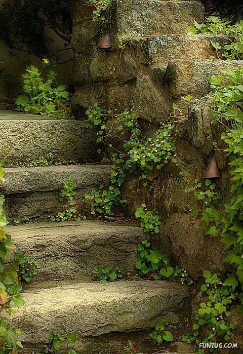 Name:  %20stunning_stairs_13.jpg Views: 245 Size:  128.0 KB
