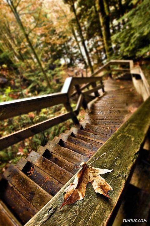 Name:  %20stunning_stairs_24.jpg Views: 213 Size:  84.8 KB