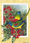 paustralianbirdscal2003xq0